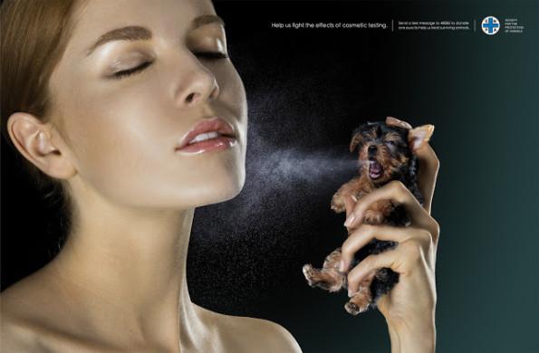 testes com animais - ENPA_Spray